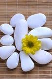 blomman stenar vit yellow Arkivfoto