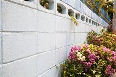 Blommande blomsterrabatt bredvid vit väggbakgrund med kopieringsutrymme Royaltyfri Foto