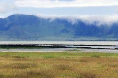 Blommande dal i den Ngorongoro kraternaturvårdsområdet Arkivfoto