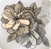 Blommande dekorativt steg, hand-teckningen också vektor för coreldrawillustration vektor illustrationer