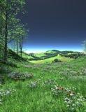 Blommande gräsmatta med grönska och blommor Royaltyfria Foton