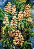 Blommande kastanjer för natt Royaltyfri Fotografi