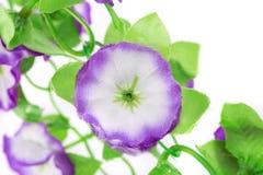 Blommande konstgjorda blommor Fotografering för Bildbyråer
