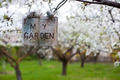 Blommande trädgårds- begrepp Fotografering för Bildbyråer