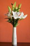 Blommande vita liljor i en slank vas Arkivbilder