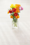 Blommaordning royaltyfri foto