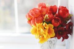 Blommaordning med tulpan och ranunculusen på ett vitt fönster Vårblommaordning i en vas royaltyfri bild