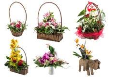 Blommaordningar Arkivfoto