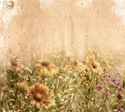 blommapapper Royaltyfri Bild
