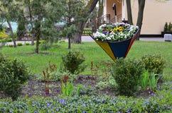 Blommaparaply royaltyfria foton