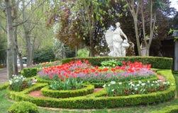 blommapark Arkivfoto