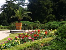 blommapark Royaltyfria Foton