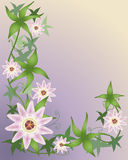 blommapassion royaltyfri illustrationer