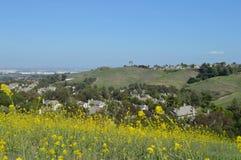 Blommaperspektiv på Ridgeline hus royaltyfri bild