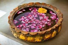 blommapetals Fotografering för Bildbyråer