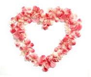 BlommaPetals i en hjärta formar Arkivfoto