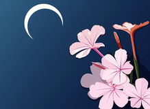 blommapink stock illustrationer