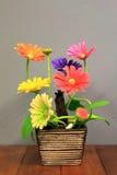 Blommaplast- Fotografering för Bildbyråer