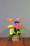 Blommaplast- Arkivbilder