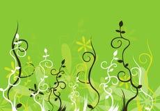 blommaprydnad Fotografering för Bildbyråer