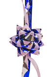 Blommaprydnad, pink och blue Royaltyfri Bild