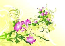 blommaprydnadfjäder Vektor Illustrationer