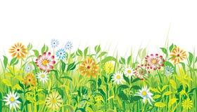 blommar ängfjädern Royaltyfri Illustrationer