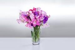 Blommar ärtor i vase Fotografering för Bildbyråer