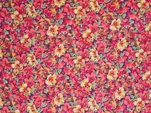 Blommar bakgrund. Royaltyfri Foto