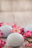 Blommar blåa påskägg för pastell med den körsbärsröda blomningen Fotografering för Bildbyråer