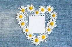 Blommar blom- bakgrund för tappning med hjärta av kamomillen Fotografering för Bildbyråer