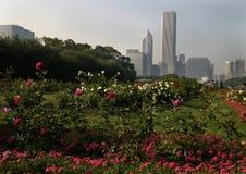 blommar chicago Arkivfoto