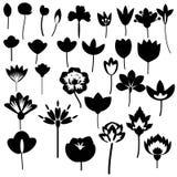 Blommar den dekorativa uppsättningen Arkivbild