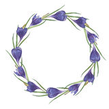 Blommar den färgrika handgjorda runda ramen för vattenfärgen med krokus arkivbild