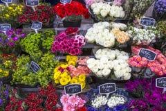 blommar den france marknaden paris Royaltyfri Fotografi