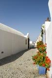 blommar den greece platsgatan Royaltyfri Bild