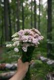 Blommar den hållande buketten för handen av skogen med handen på naturskogen, fritidlivsstil Eco organisk Hipsterstil advent fotografering för bildbyråer