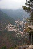 blommar den himalayasnepal fjädern Arkivbild