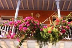 blommar den koloniala detaljen för balkongen huset Arkivfoto