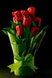blommar den röda tulpan Arkivfoto