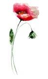 blommar den stylized vallmon Arkivbilder