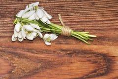 Blommar den vita snödroppen för våren på träbakgrund Royaltyfri Foto
