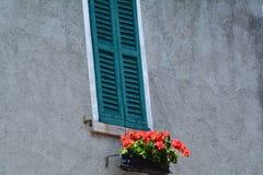 blommar det röda fönstret Arkivbilder