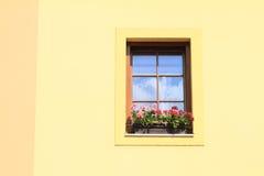 blommar det röda fönstret Fotografering för Bildbyråer