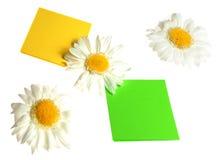 blommar etiketter Arkivfoton