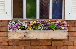 Blommar fönster Arkivfoton