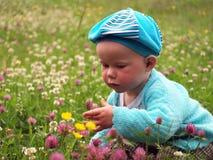 blommar flickan little många Royaltyfria Foton