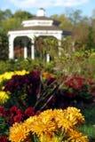 blommar gazeboparken Arkivbild