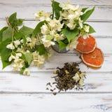 Blommar gröna teblad för jasmin med jasmin på vit bakgrund Arkivbild