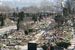 blommar graven Royaltyfri Foto